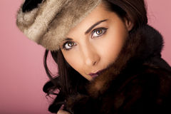 Beauty in fur. Royalty Free Stock Photos