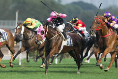 Beauty Generation wins the Violet Handicap in Hong Kong Stock Photography