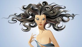 The beauty girl. Vector illustration Stock Images