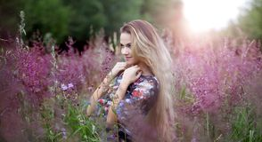 Beauty  girl alone with nature, freedom concept Stock Image