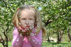 Beauty girl blowing off petals Royalty Free Stock Image