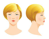 Beauty girl face. Various turns head. Face in front. Face in profile Royalty Free Stock Photo