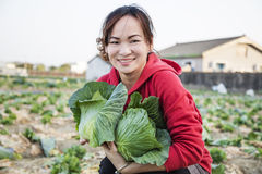 Beauty girl and green cabbages Royalty Free Stock Photo