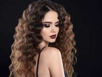 Beauty girl hair. Curly hairstyle. Brunette girl with healthy lo royalty free stock photography