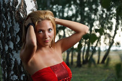 Beauty girl in nature Stock Photography