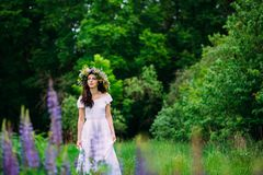 Girl with a wreath of wildflowers on her head royalty free stock photo