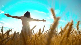 Beauty girl outdoors enjoying nature wheat field slow motion video. Beautiful girl in white dress running nature freedom. Happiness on the autumn field at stock footage