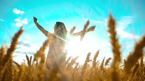 Beauty girl outdoors enjoying nature wheat field slow motion video. Beautiful girl in white dress running nature freedom. Happiness hands to side on field at stock footage