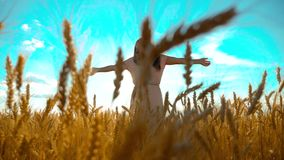 Beauty girl outdoors enjoying nature wheat field slow motion video. Beautiful girl in white dress running nature freedom. Happiness on the autumn field at stock video footage