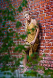 Beauty girl posing fashion near red brick wall Royalty Free Stock Images