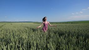 Beauty girl running on green wheat field. Freedom concept. Happy woman outdoors Royalty Free Stock Photo