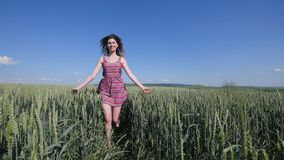 Beauty girl running on green wheat field. Freedom concept. Happy woman outdoors. Harvest Stock Photos
