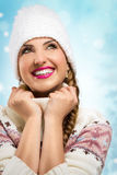 A beauty girl on the winter background Stock Photography