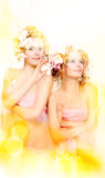 Beauty girls Royalty Free Stock Photography