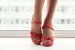 Beauty girls legs. Slim beauty legs in red shoes Stock Image