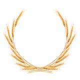 Beauty golden wheat. EPS 10 Stock Image