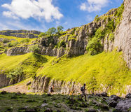 Beauty goredale scar Royalty Free Stock Photography