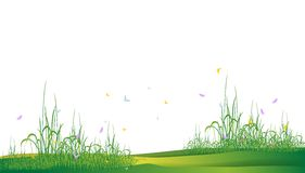 Beauty grass silhouette Royalty Free Stock Photography