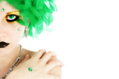 Beauty in Green Feathers Stock Photography