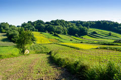 Beauty green hills in Poland Stock Photos