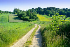 Beauty green hills in Poland Stock Image