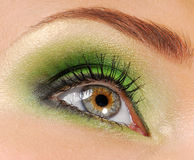 Beauty green make-up Stock Images