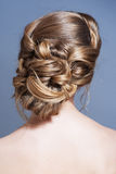Beauty hair. Hairstyle back view isolated on gray Royalty Free Stock Photography