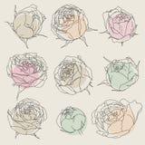 Beauty hand drawn flowers Stock Photo