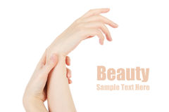 Beauty hands Royalty Free Stock Image