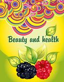 Beauty and health stock illustration