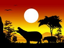 Beauty hippo silhouettes with landscape background Stock Photos