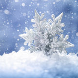 Beauty holidays backgrounds with snow flake Stock Photography