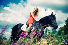 Beauty on horse stock photography