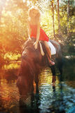 Beauty and horse Royalty Free Stock Images