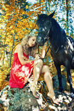 Beauty and horse Stock Photography
