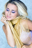 Beauty In Silk Scarf Stock Images