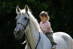 Beauty intent girl riding bareback by gray horse royalty free stock images