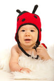 Beauty ladybug baby Stock Photo