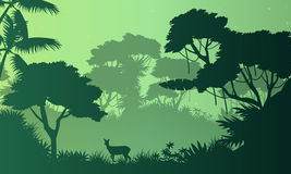 Beauty landscape jungle with deer silhouette Stock Image