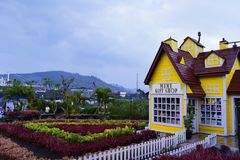 Beauty lanscape from garden mountain in lembang bandung royalty free stock photography