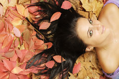 Beauty on leaves Royalty Free Stock Photos