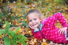Beauty in the Leaves Stock Photo