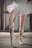 Beauty legs of ballerina standing in pointes Stock Image