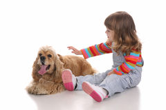 Beauty a little girl and dog Stock Image