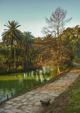Beauty Lonely Park in Montevideo Royalty Free Stock Images
