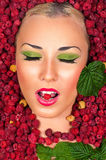 Beauty Makeup face in raspberries Royalty Free Stock Photos