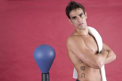 Beauty man boxer fighting with punch Stock Photos
