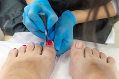 The beauty master paints the toenails with varnish in pink and silver stock photos