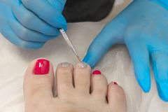 The beauty master paints the toenails with varnish in pink and silver stock photography