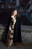 Beauty in medieval dress Stock Image